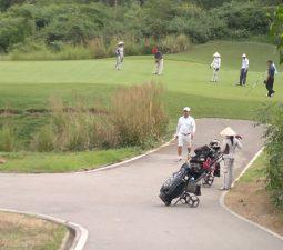 nghe-caddy-tren-san-golf