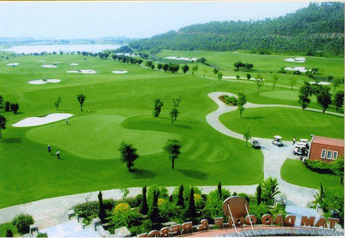 Tam Đảo là sân golf gần hà nội với không khí, tiết trời se lạnh