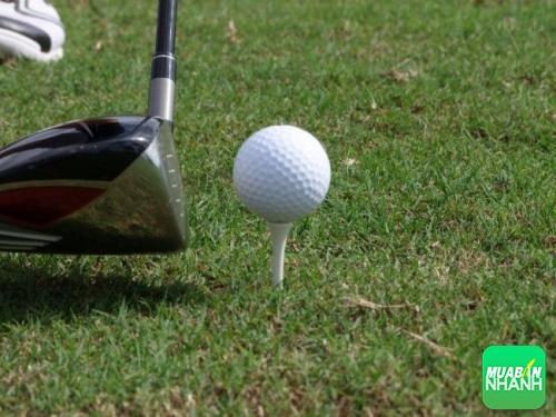 Tìm hiểu mức giá 1 quả bóng golf bao nhiêu tiền
