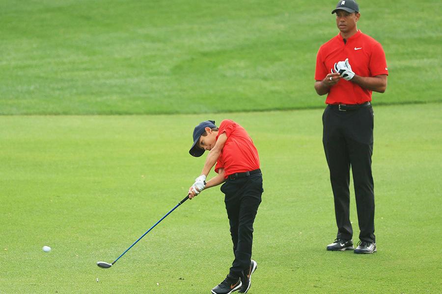 con-sot-voi-su-xuat-hien-cua-cha-con-nha-lao-ho-tai-san-golf
